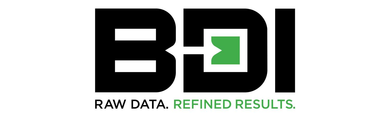 美国BDI 全球最先进的桥梁诊断系统