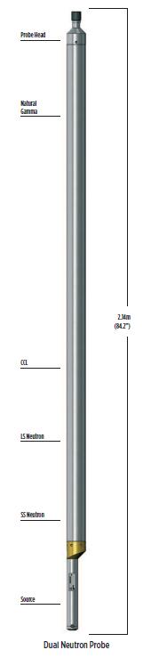 RG - Dual Neutron